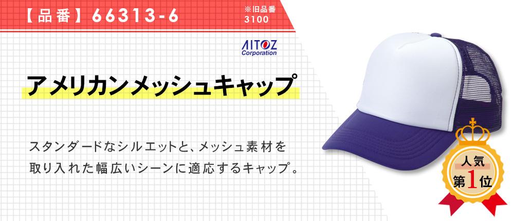 アメリカンメッシュキャップ(3100)39カラー・1サイズ