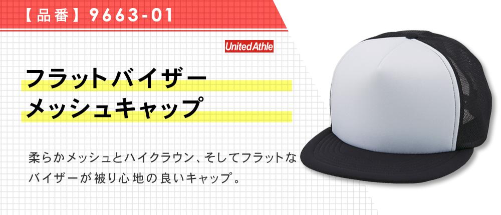フラットバイザーメッシュキャップ(9663-01)6カラー・1サイズ