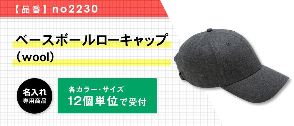 ベースボールローキャップ (wool)(no2230)4カラー・1サイズ