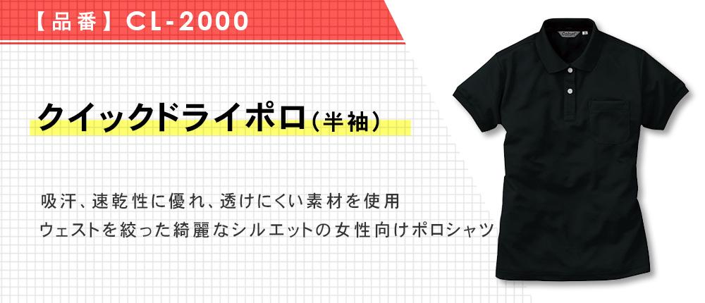 クイックドライポロ(半袖)(レディース)(CL-2000)4カラー・6サイズ