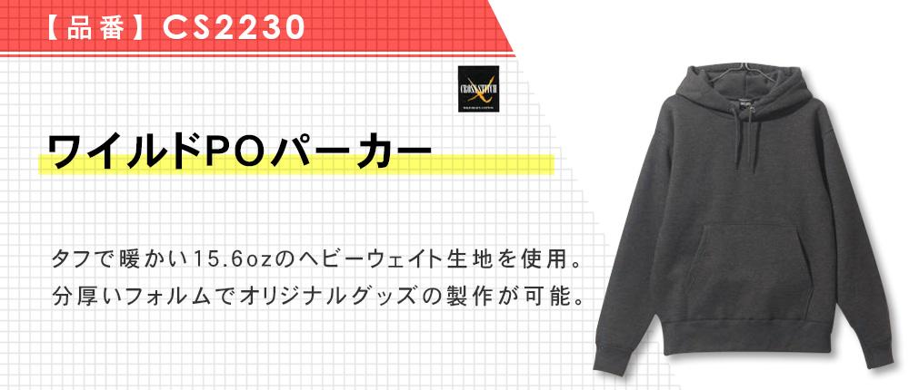 ワイルドPOパーカー(CS2230)5カラー・6サイズ