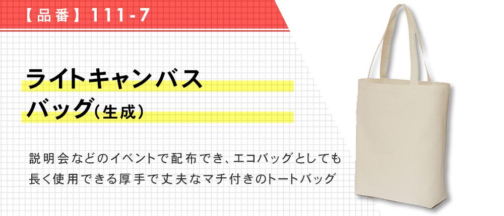 ライトキャンバスバッグ(生成)(111-7)1カラー・1サイズ