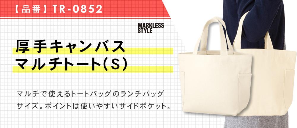 厚手キャンバスマルチトート(S)(TR-0852)2カラー・1サイズ