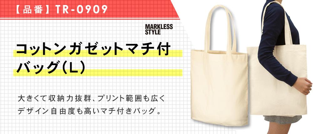 コットンガゼットマチ付バッグ(L)(TR-0909)2カラー・1サイズ