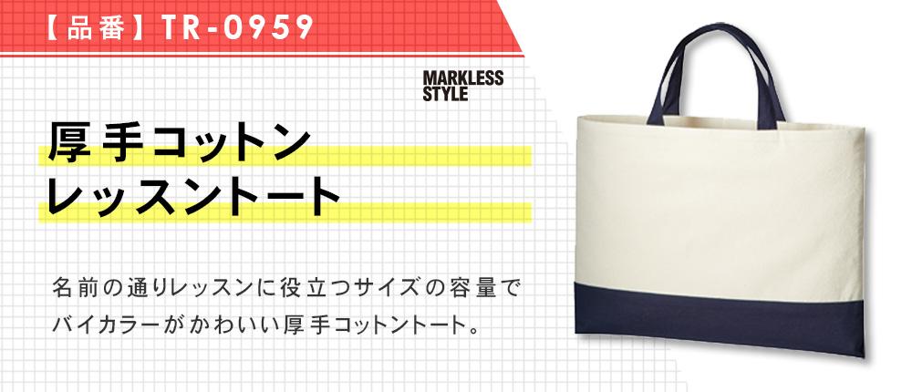 厚手コットンレッスントート(TR-0959)4カラー・1サイズ