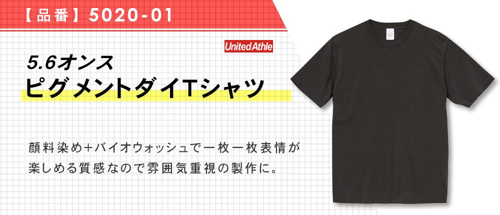 5.6オンス ピグメントダイTシャツ(5020-01)3カラー・5サイズ
