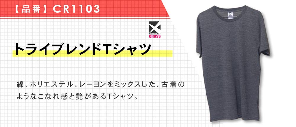 トライブレンドTシャツ(CR1103)16カラー・5サイズ