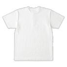 オープンエンドマックスウェイトヘンリーネックTシャツ(OE1120)背面