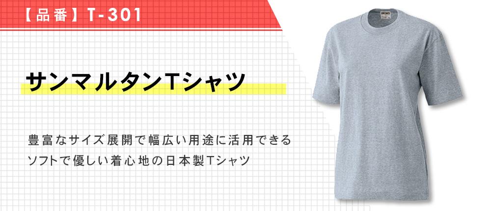 サンマルタンTシャツ(T-301)11カラー・14サイズ