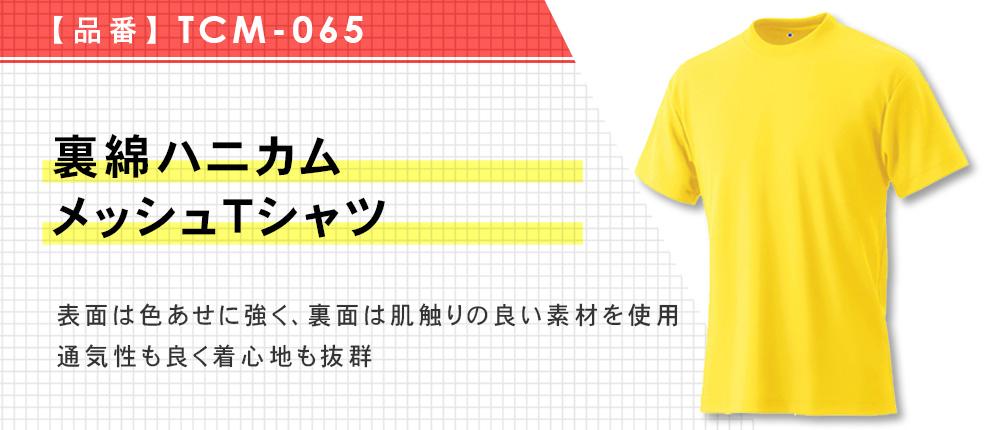 裏綿ハニカムメッシュTシャツ(TCM-065)10カラー・11サイズ