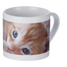 フルカラー転写対応陶器マグカップ(170ml)(白)(109645)フルカラー印刷可能