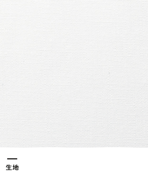 レディスウイングカラー長袖ブラウス(FB4025L)生地