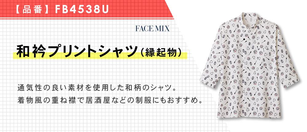 和衿プリントシャツ(縁起物)(FB4538U)1カラー・7サイズ